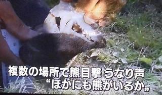 人食い熊・胃から人体600 2.JPG