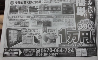 carnavi 新聞広告カーナビ2.jpg